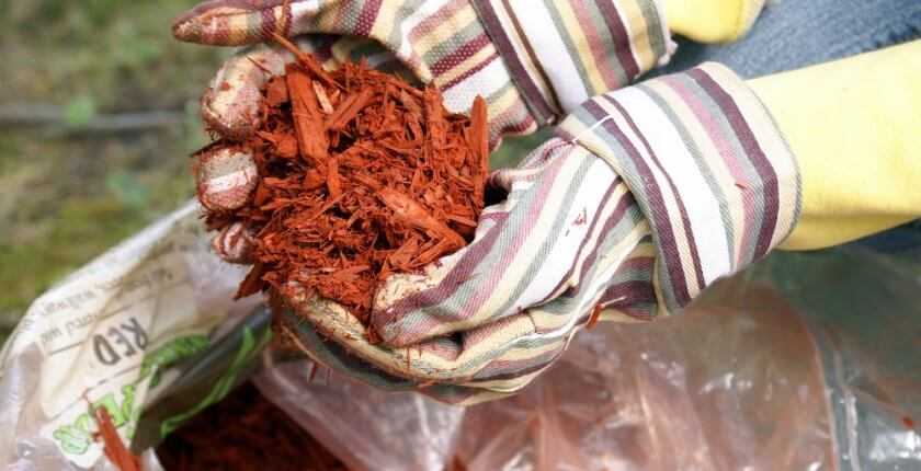 Gardening with Red Mulch