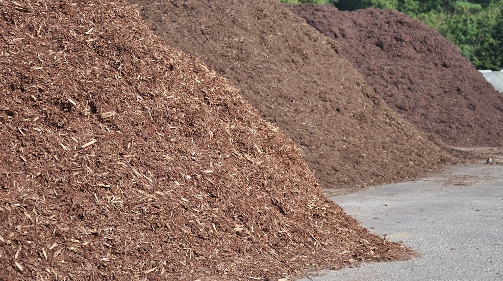 Various types of mulch